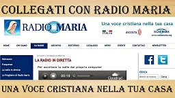 radiomaria1